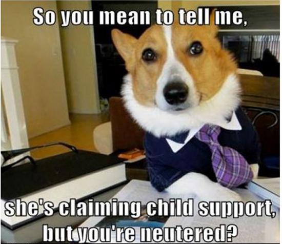 Funny Memes Part 12 - Pics  (8)