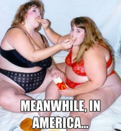 Meanwhile in.. America - Funny Memes