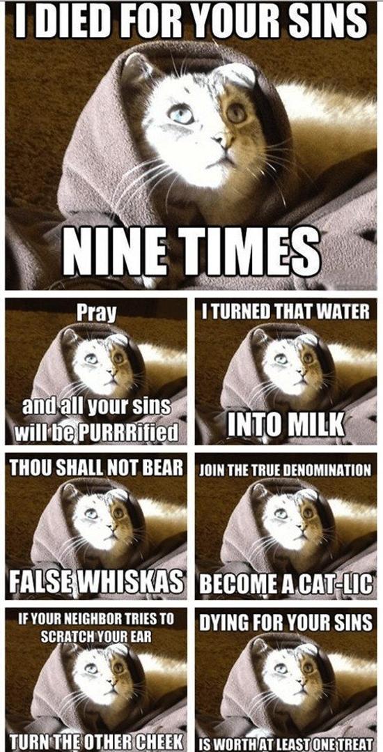Nine Times - Funny Memes
