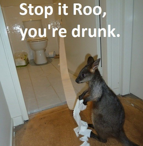 Stop It Roo - Funny Memes